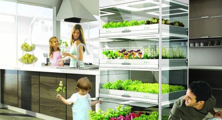 Küchen-Garten