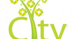 City; Bild: shutterstock