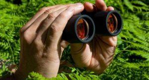 Spionage; Foto: shutterstock
