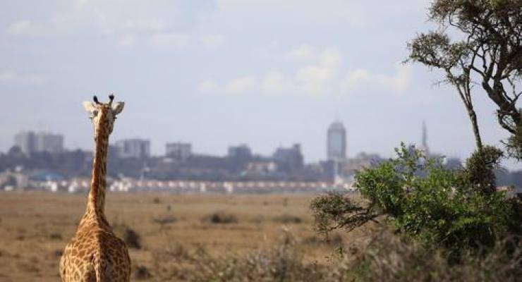 Kenia; Foto: shutterstock