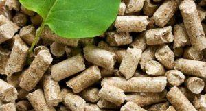 Pellets; Foto: shutterstock