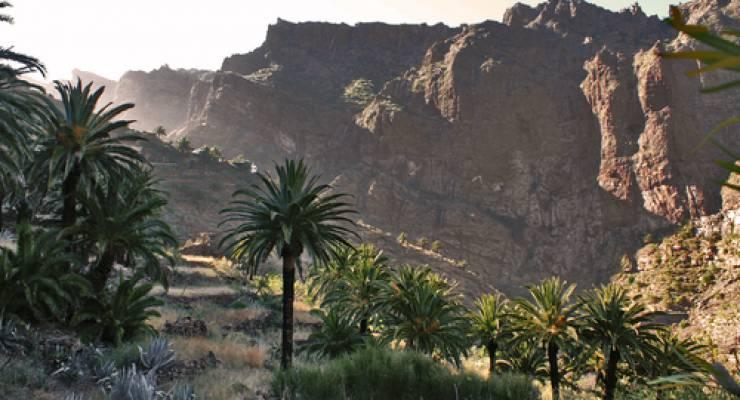 Der Caldera de las Cañadas , Teneriffa; Foto: Angela Huth (aboutpixel)