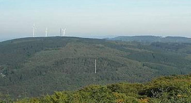 Binger Wald mit Windkraftanlagen im Hintergrund; Foto: Nikanos (Wikicommons)