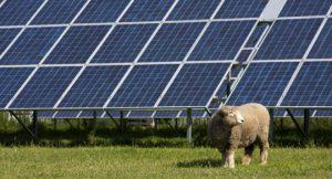 Solaranlage; Foto: shutterstock