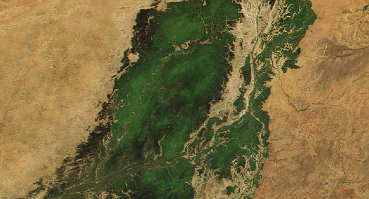 Nigerdelta; Foto: Jacques Descloitres, MODIS Land Rapid Response Team, NASA/GSFC (Wiki Commons)