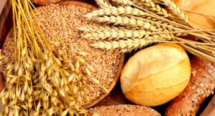 Brot und Getreide; Foto: Sven Hastedt (aboutpixel)