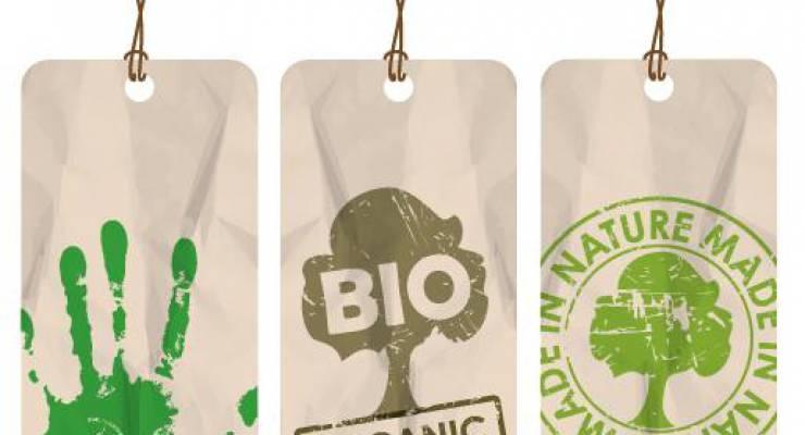 Nachhaltiger Konsum; Bild: shutterstock
