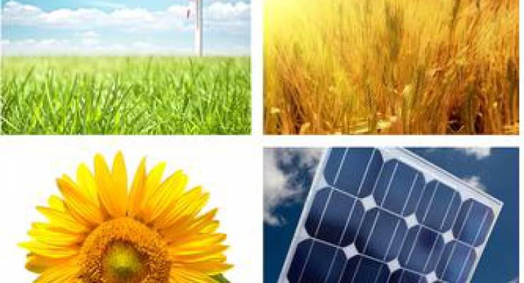 nachhaltige Energie; Bild: shutterstock