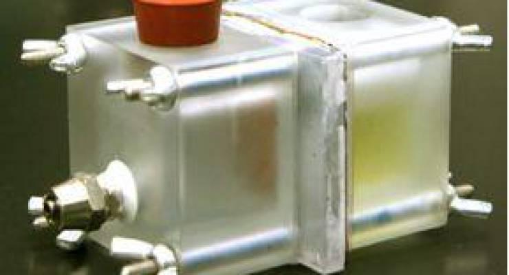 Mikrobielle Entsalzungszelle (MDC)