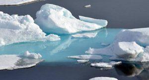 Arktiseis