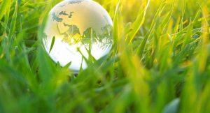 Grünes Wachstum