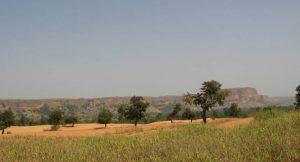 Desertifikation