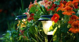 Solarlampen bringen den Garten auch nachts zum Leuchten