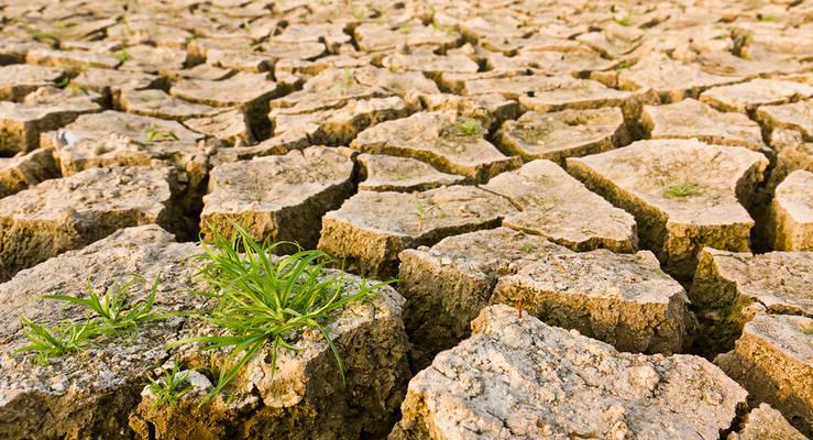 Die Folgen des Klimawandels sind nicht überall gleich spürbar