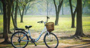 Nun bewährt sich eine fahrradfreundliche Politik