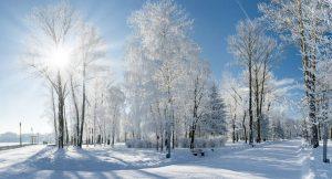 Die Eiszeit in der Photovoltaik ist hoffentlich bald vorbei
