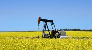 Biokraftstoffe lösen fossile Brennstoffe ab