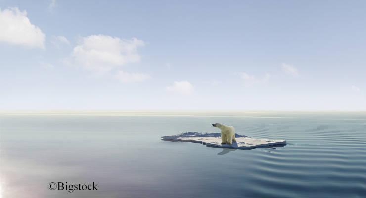 Die Zeichen darauf, dass der Klimawandel vielleicht doch noch aufgehalten werden kann, haben zuletzt zugenommen.