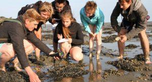 Meeresforscher für den Umweltschutz