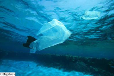 Bio-Kunststoffe als Alternative