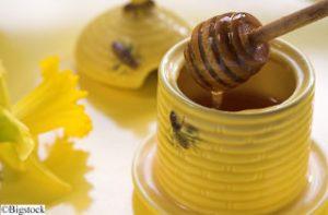 Honig im Topf