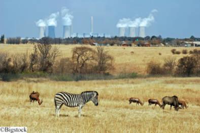 Der Senegal plant mit Kohle