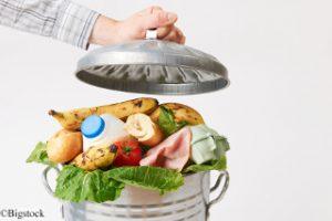 Lebensmittel nachhaltiger Konsum