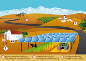 Die Agrophotovoltaik möchte vormachen wie Solarstromerzeugung und Nahrungsmittelproduktion Hand in Hand gehen können.