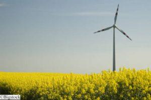 Energiewende - Umfrage