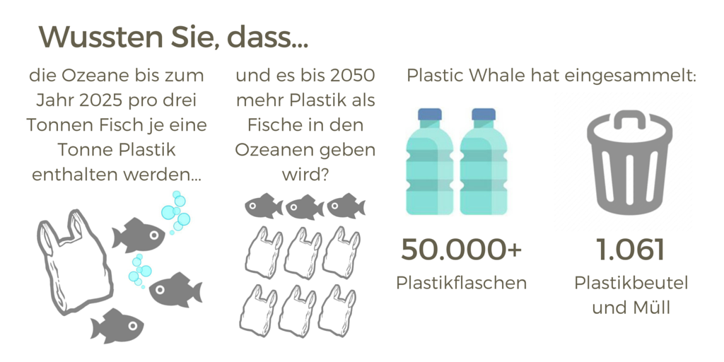 Interface Infographic plastic waste German