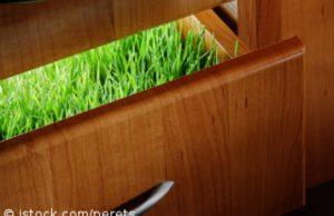 Ökologische Möbelmarken