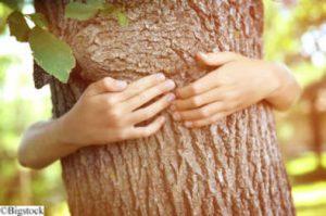 Green Lifestyle - Umweltratgeber