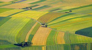 Klimaforschung auf Getreidefeldern