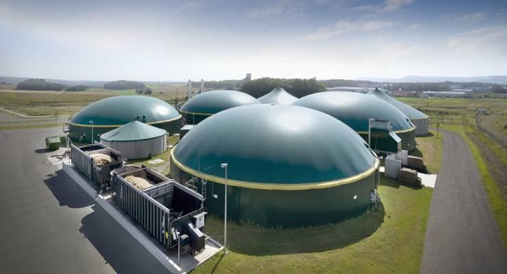 Biomasseanlagen