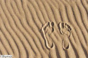 Klimaneutrale Reisen