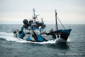 Sea Shepherd Flagship