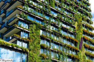 grünes mit Planzen bewachsenes Gebäude