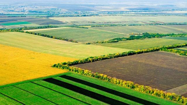 Agrarpolitik gemeinsam gestalten. Kommission startet Umfrage.