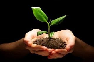 UN-Grundlagebericht, Ressourcen schonen und mehr Wachstum