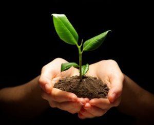 UN-Grundlagenbericht: ressourcenschonend zu mehr Wachstum. Foto: panthermedia