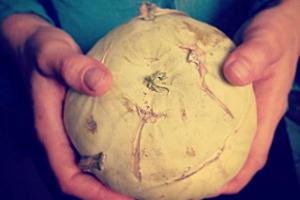 Durch Foodsharing geretteter Kohlrabi, gehalten von zwei Händen vor einem grünlichen Hintergrund.
