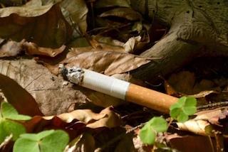 Warum Rauchen schädlich für die Umwelt ist