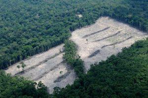 Naturschutzgebiet vorerst sicher
