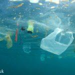 Zwischenbericht: Runder Tisch gegen Meeresmüll