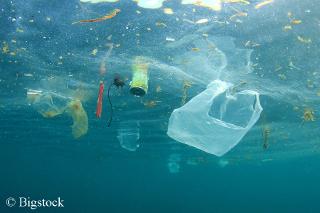 Meeresmüll: Der Runde Tisch will das Meer von Plastikmüll befreien.
