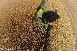 Sind Pestizide unentbehrlich?Sind Pestizide unentbehrlich?
