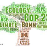 Weltklimakonferenz soll vollständig klimaneutral werden