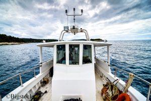 Auch die neuen Fangquoten schützen die bedrohten Fischbestände nicht ausreichend.