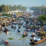 "WWF-Report: ""Stranger Species"" am Mekong"