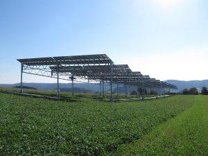 Agrophotovoltaik-Pilotanlage auf dem Gelände der Demeter-